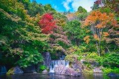 Japanese garden of Expo`70 commemorative park. Osaka, Japan - November 17, 2018: Japanese garden of Expo`70 commemorative park in autumn, shot in Osaka, Japan stock image