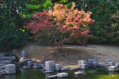 Japanese garden of Expo`70 commemorative park. Osaka, Japan - November 17, 2018: Japanese garden of Expo`70 commemorative park in autumn, shot in Osaka, Japan stock images