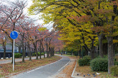 OSAKA, JAPAN - NOVEMBER 13.2015 Openbaar park in Osaka Castle Stock Afbeeldingen
