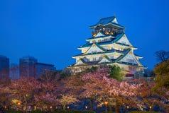 Osaka Japan på Osaka Castle Royaltyfri Fotografi