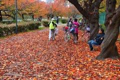 Osaka jesień Fotografia Royalty Free