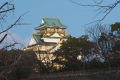 Osaka kasztel tworzy wibrującą atmosferę w wiośnie Robi pary przychodzić widzieć piękno Kansai zdjęcia royalty free