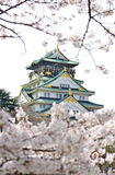 Osaka kasztel w Sakura Zdjęcia Stock