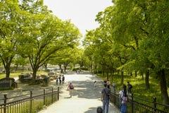 Osaka kasztelu park Osaka kasztel jest jeden Japan?s najwi?cej s?awnych punkt?w zwrotnych fotografia royalty free