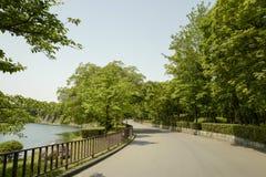 Osaka kasztelu park Osaka kasztel jest jeden Japan?s najwi?cej s?awnych punkt?w zwrotnych obrazy royalty free