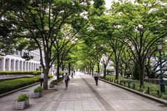 Passers by in Osaka streets and parks during a hot summer day, Central Osaka, Nakanoshima Island, Japan,. Osaka is a large port city and commercial center on the royalty free stock photos