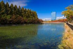 Osaka park Zdjęcie Royalty Free