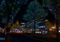 Osaka`s Midosuji Street Christmas illuminations. One of the world longest street illumination stock images