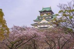 Osaka-Schloss mit Kirschblüte Stockfoto