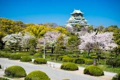Osaka slott med de körsbärsröda blomningarna Royaltyfri Foto