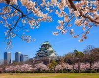 Osaka slott, osaka, Japan Royaltyfria Foton