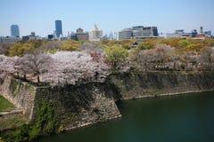 Osaka-Stadtbild mit schöner Sakura-Blüte Stockfotos