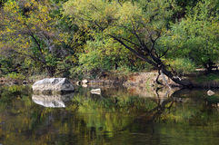 The Osam River in the Fall Royalty Free Stock Photo