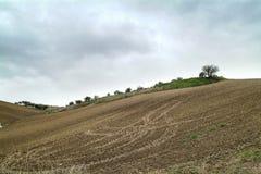 Osamotneni sztuki natury wzgórza pod chmurnym niebem zdjęcia royalty free