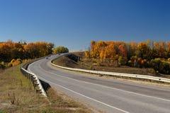 Osamotniona autostrada i drzewa w jesieni Zdjęcia Stock