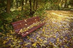 Osamotniona ławka w jesieni Obraz Royalty Free