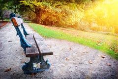 Osamotniona ławka w jesieni miasta parku Fotografia Stock