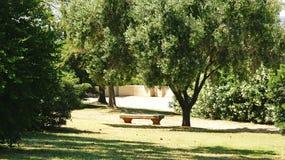 Osamotniona ławka w ogródach Montjuic Obraz Royalty Free