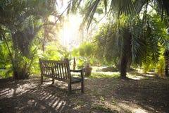 Osamotniona ławka w ogródzie Obraz Stock