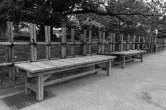 Osamotniona ławka w parku Fotografia Royalty Free