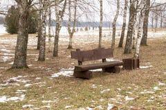 Osamotniona ławka w zima parku Zdjęcie Stock