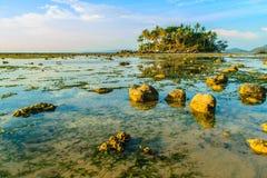 Osamotniona daleka wyspa z skały drzewem i plażą gdy woda morska Zdjęcia Stock