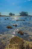 Osamotniona daleka wyspa z skały drzewem i plażą gdy woda morska Zdjęcia Royalty Free