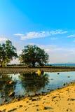 Osamotniona daleka wyspa z skały drzewem i plażą gdy woda morska Fotografia Royalty Free
