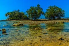 Osamotniona daleka wyspa z skały drzewem i plażą gdy woda morska Obraz Stock