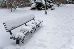 Osamotniona drewniana ławka zakrywająca z śniegiem Zdjęcie Royalty Free