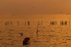 Osamotniona drewniana rybak łódź z seagulls gdy zmierzch, wschód słońca na morzu/ Obrazy Royalty Free