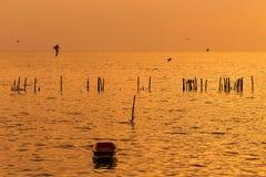 Osamotniona drewniana rybak łódź z seagulls gdy zmierzch, wschód słońca na morzu/ Zdjęcia Stock
