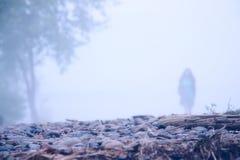 osamotniona dziewczyny mgła Obraz Royalty Free