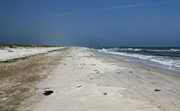 Osamotniona Floryda plaża z diunami i kipielą Fotografia Stock