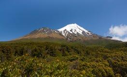 Osamotniona góra - Taranaki (góra Egmont) Zdjęcie Royalty Free