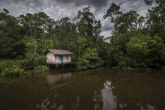 Osamotniona i smutna buda po środku tropikalnej dżungli w Indonezja Obrazy Stock