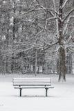 Osamotniona marznąca ławka przy łupkarza parkiem obraz royalty free