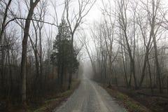 Osamotniona mgłowa wiejska droga w opóźnionym spadku Zdjęcie Stock