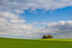 Osamotniona wyspa pełno drzewa w jesieni Zdjęcia Royalty Free