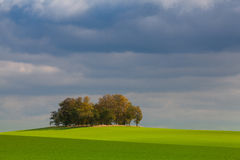 Osamotniona wyspa pełno drzewa w jesieni Obraz Royalty Free