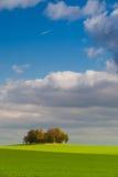 Osamotniona wyspa pełno drzewa w jesieni Zdjęcie Stock