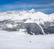 Osamotnione łowieckie snowbound stróżówki Obraz Royalty Free