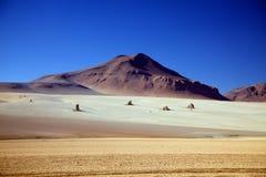 osamotnione altiplano skały zdjęcie royalty free
