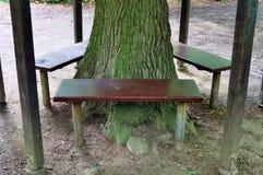 Osamotnione drewniane ławki cisi miejsca brać po całym północny Europe obraz royalty free