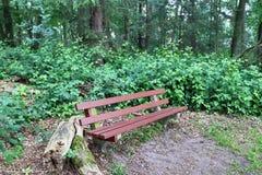 Osamotnione drewniane ławki cisi miejsca brać po całym północny Europe zdjęcie stock