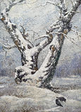 osamotniony dębowy drewno Obraz Stock