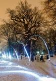 Osamotniony dębowy drzewo przy zimy nocą Zdjęcia Stock