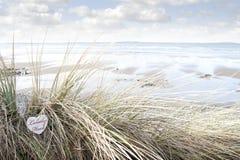 Osamotniony drewniany serce na plażowych diunach Zdjęcie Stock