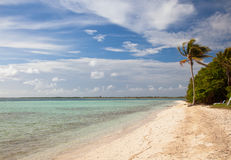 Osamotniony drzewko palmowe na tropikalnej wyspy piaskowatej plaży, kurortu waterfro Obrazy Stock