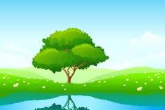 osamotniony drzewo royalty ilustracja